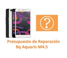 Reparar Bq Aquaris M4.5 - Imagen 1