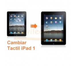 Cambiar Pantalla Tactil ( Cristal) iPad-1 - Imagen 1