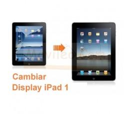 Cambiar Pantalla Lcd Display iPad-1 - Imagen 1
