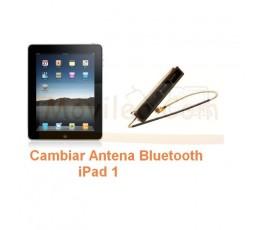 Cambiar Antena Bluetooth en iPad-1 - Imagen 1