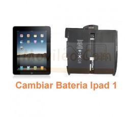 Cambiar Bateria iPad-1 - Imagen 1
