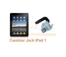 Cambiar Jack iPad-1 - Imagen 1