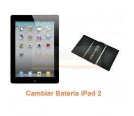 Cambiar Bateria iPad-2 - Imagen 1