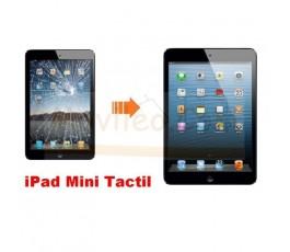 Cambiar Pantalla tactil (cristal) de iPad Mini - Imagen 1