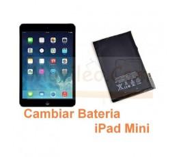 Cambiar Bateria iPad Mini - Imagen 1