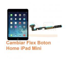Cambiar Flex Boton Home iPad Mini - Imagen 1