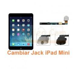 Cambiar Audio Jack iPad Mini - Imagen 1