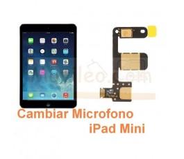 Cambiar Microfono iPad Mini - Imagen 1