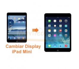 Cambiar Pantalla Lcd Display iPad Mini - Imagen 1