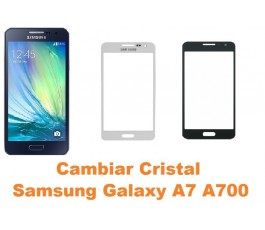 Cambiar Cristal Samsung Galaxy A7 A700 - Imagen 1