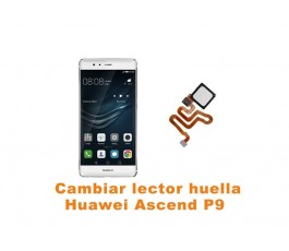 Cambiar lector huella Huawei Ascend P9