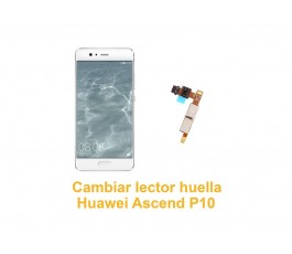 Cambiar lector huella Huawei Ascend P10