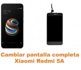 Cambiar pantalla completa Xiaomi Redmi 5A