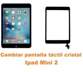 Cambiar pantalla táctil cristal Ipad Mini 2