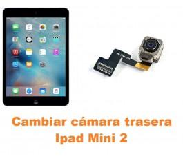Cambiar cámara trasera Ipad Mini 2