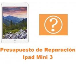 Presupuesto de reparación Ipad Mini 3