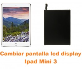 Cambiar pantalla lcd display Ipad Mini 3
