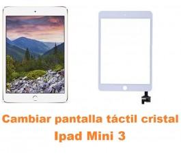 Cambiar pantalla táctil cristal Ipad Mini 3