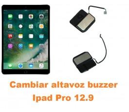 Cambiar altavoz buzzer Ipad Pro 12.9