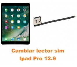 Cambiar lector sim Ipad Pro 12.9