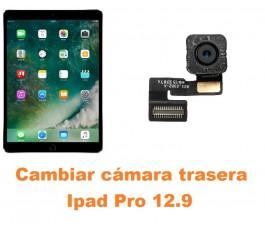 Cambiar cámara trasera Ipad Pro 12.9