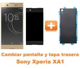 Cambiar pantalla completa y tapa trasera Sony Xperia XA1