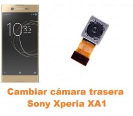 Cambiar cámara trasera Sony Xperia XA1