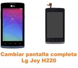 Cambiar pantalla completa Lg Joy H220
