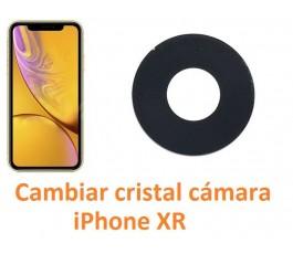 Cambiar cristal cámara...