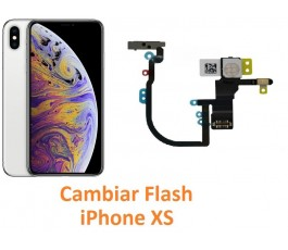 Cambiar flash iPhone XS