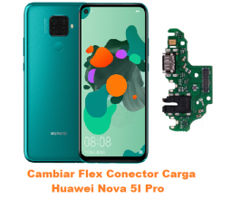 Cambiar Flex Conector Carga...