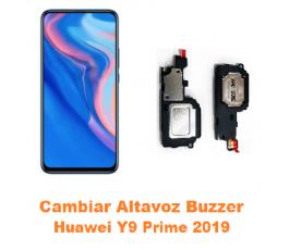 Cambiar Altavoz Buzzer...
