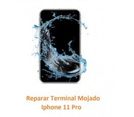 Reparar Terminal Mojado...