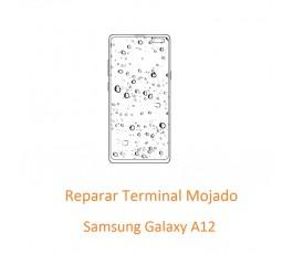 Terminal Mojado Samsung...