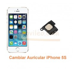 Cambiar Auricular iPhone 5S - Imagen 1