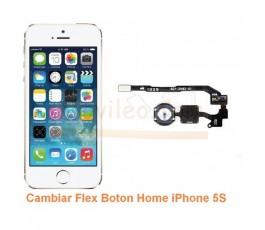 Cambiar Flex Boton Home iPhone 5S - Imagen 1