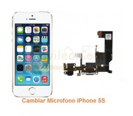Cambiar Microfono iPhone 5S - Imagen 1