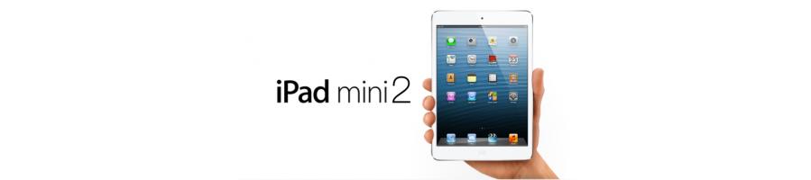 iPad Mini 2 A-1489