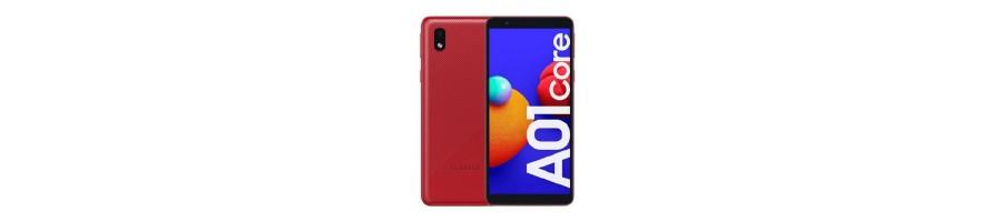 A01 Core A013